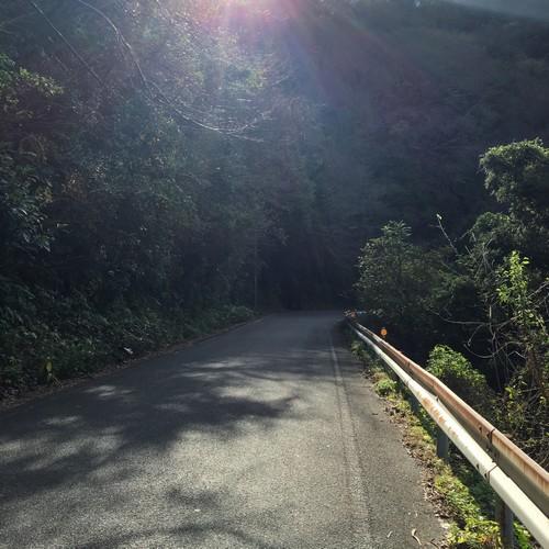 三浦半島道