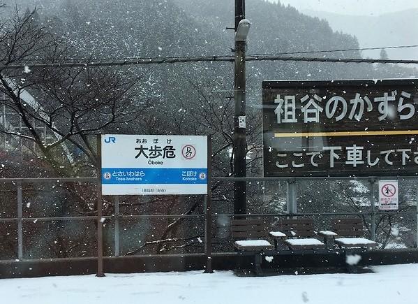 雪の大歩危